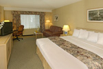 Holiday Inn Select - Standard King Size Room